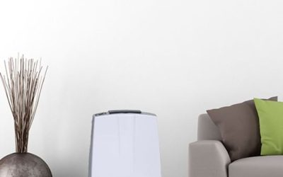 Cum știi că ai nevoie de un dezumidificator de aer în casă și ce ai de făcut.